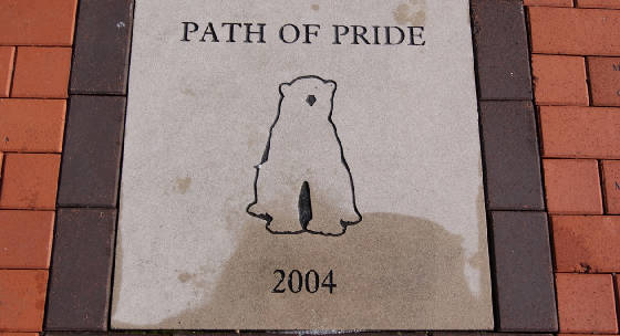 path.of.pride.jpg